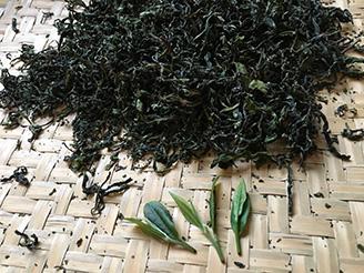 茶藝中級證書課程