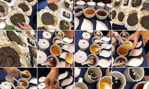 茶藝初級証書課程